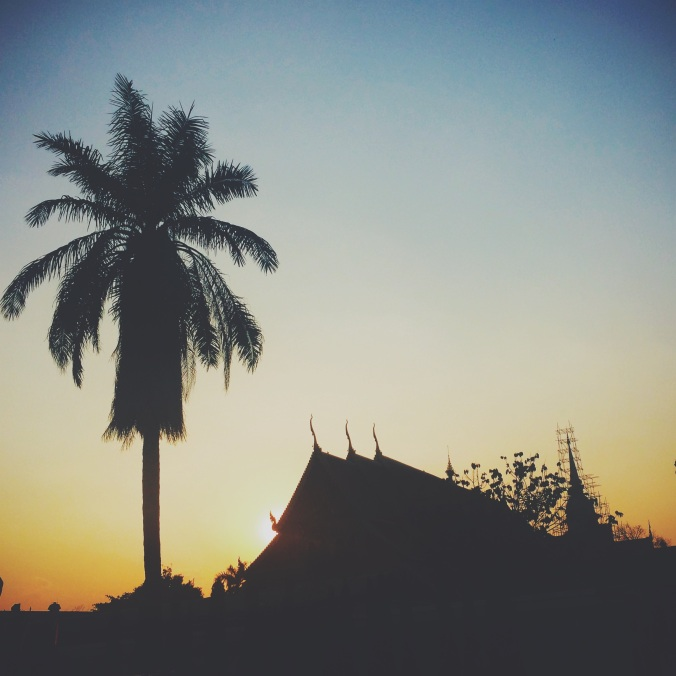 Silhouette of palm tree and Buddhist temple, Wat Phra Singh, in Chiang Mai, Thailand